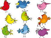 Conjunto de engraçado pequenos passarinhos — Vetor de Stock