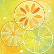 Stock Vector: Citrus