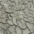 Dry crannied soil background - Stock Photo