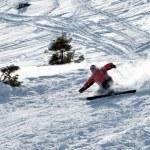 esquiador cae — Foto de Stock