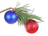 Christmas branch of a pine — Stock Photo