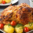 Chicken — Stock Photo #1005826