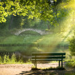 Bench - Photo