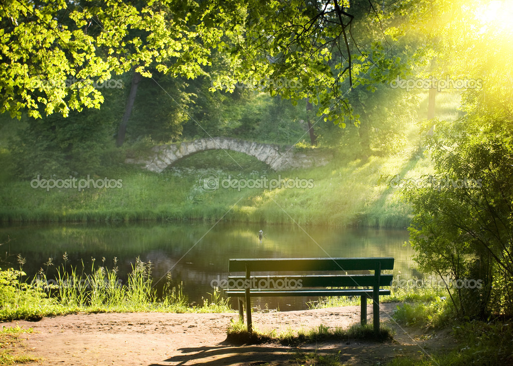 Bench on the bank of the river in summer day  Foto de Stock   #1006701