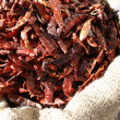 Dried red chili peppers in the sac — Stock Photo #1035728