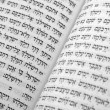 Royalty-Free Stock Photo: Hebrew Bible