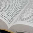 Hebrew Bible — Stock Photo #1036757