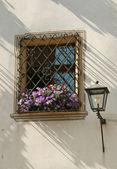 Old buildings window — Stock Photo