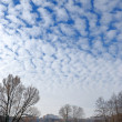 Royalty-Free Stock Photo: Clouds in the winter sky.