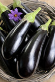 Eggplants. — Stock Photo