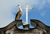 Stork and a cross — Stock Photo