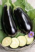 Eggplants. — Stock Photo