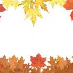 Autumn leaves — Stock Photo #1010843