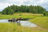 Haymaking on a Viliya — Stock Photo