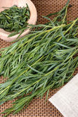Tarragon (Artemisa dracunculus) — Stock Photo