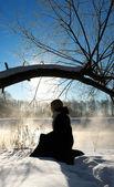 凍るような冬の朝 — ストック写真