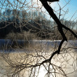 Stock Photo: Frosty winter morning