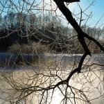 Frosty winter morning — Стоковое фото #1578279