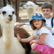 Stock Photo: Children and animals in zoo