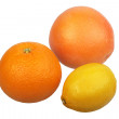 Orange, grapefruit and yellow lemon. - Stock Photo
