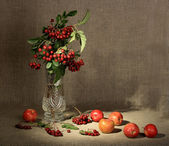 Bouquet of ashberry in glass vase and gr — Stock Photo
