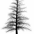 Royalty-Free Stock Vectorafbeeldingen: Tree silhouette.