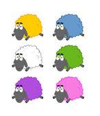 Multicolored Sheep — Stock Photo
