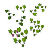 Abstract cartooned grapevines — Stock Photo