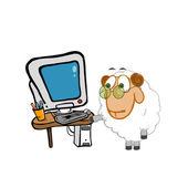 Programista owiec — Zdjęcie stockowe