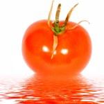 Red Tomato — Stock Photo