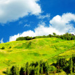 Stock Photo: Green grassland and sky for background