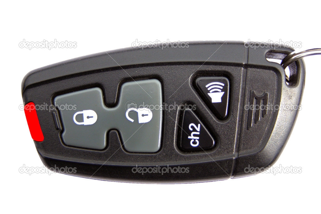 Charm from the car alarm system  Stock Photo #1100634