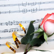 Stock Photo: Rose on a musical paper