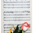 Rose on a musical paper — Stock Photo