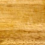 fragment drewno dąb — Zdjęcie stockowe