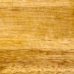 fragment van hout eik — Stockfoto