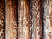 Tracery logs — Stock Photo