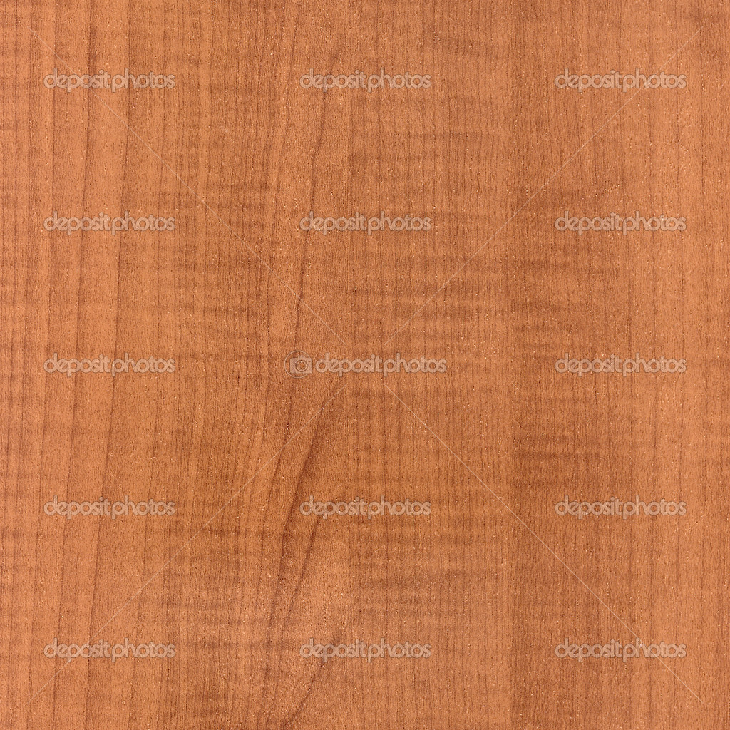 Fragment texture wood. High detailed this image — Stock Photo #1009530