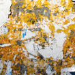 Tattered paper of grungy urban wall - Photo