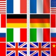 Vector set of flags with variation — 图库矢量图片 #1326357