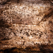 Royalty-Free Stock Photo: Dirty grunge abstract background