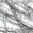 Royalty-Free Stock Photo: Marble background
