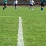 Soccer filed — Stock Photo