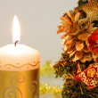 Christmas decorations — Stockfoto #1005849