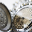 Pocket watches — Stock Photo #1332398