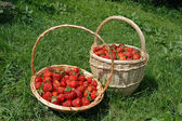 Strawberry Baskets — Stock Photo