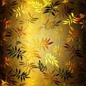 Veelkleurige gesneden bladeren — Stockfoto
