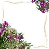 花卉帧 — 图库照片