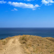 Stock Photo: View from hill on sea