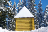 Log cabin in snowy forest — Stock Photo